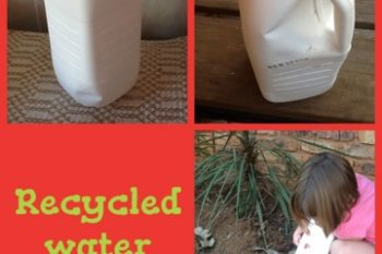 Recycled Watering Can