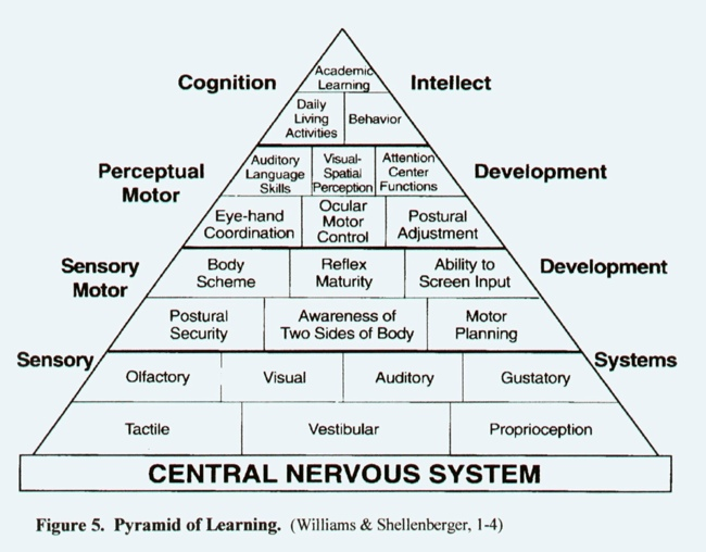 Pyramid of Learning