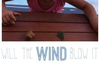 Simple Science: Wind Experiment
