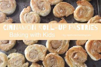 Cinnamon Roll up Pastries