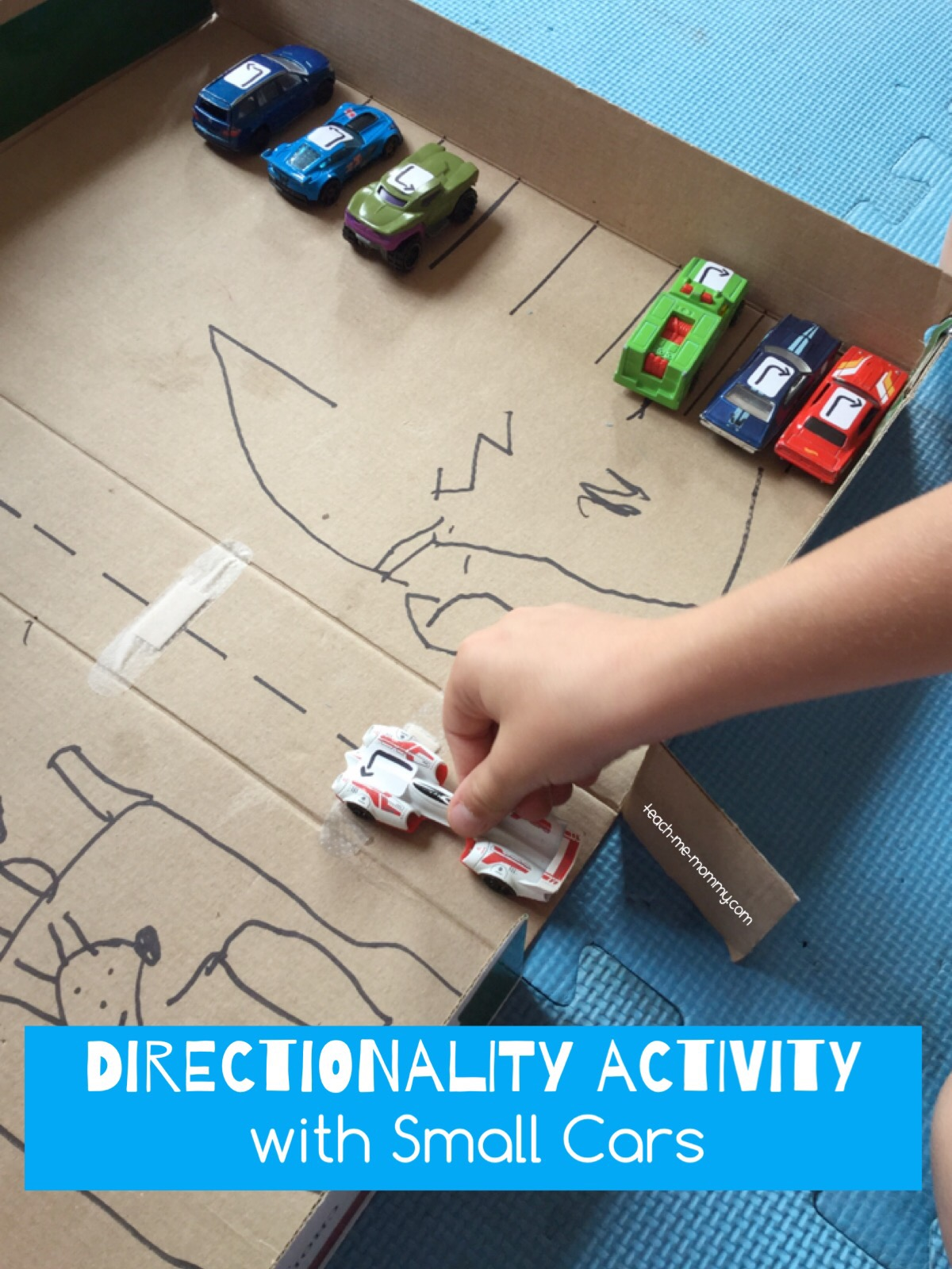 directionality act