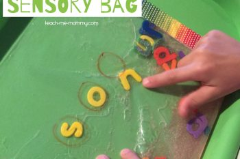 CVC Words Sensory Bag