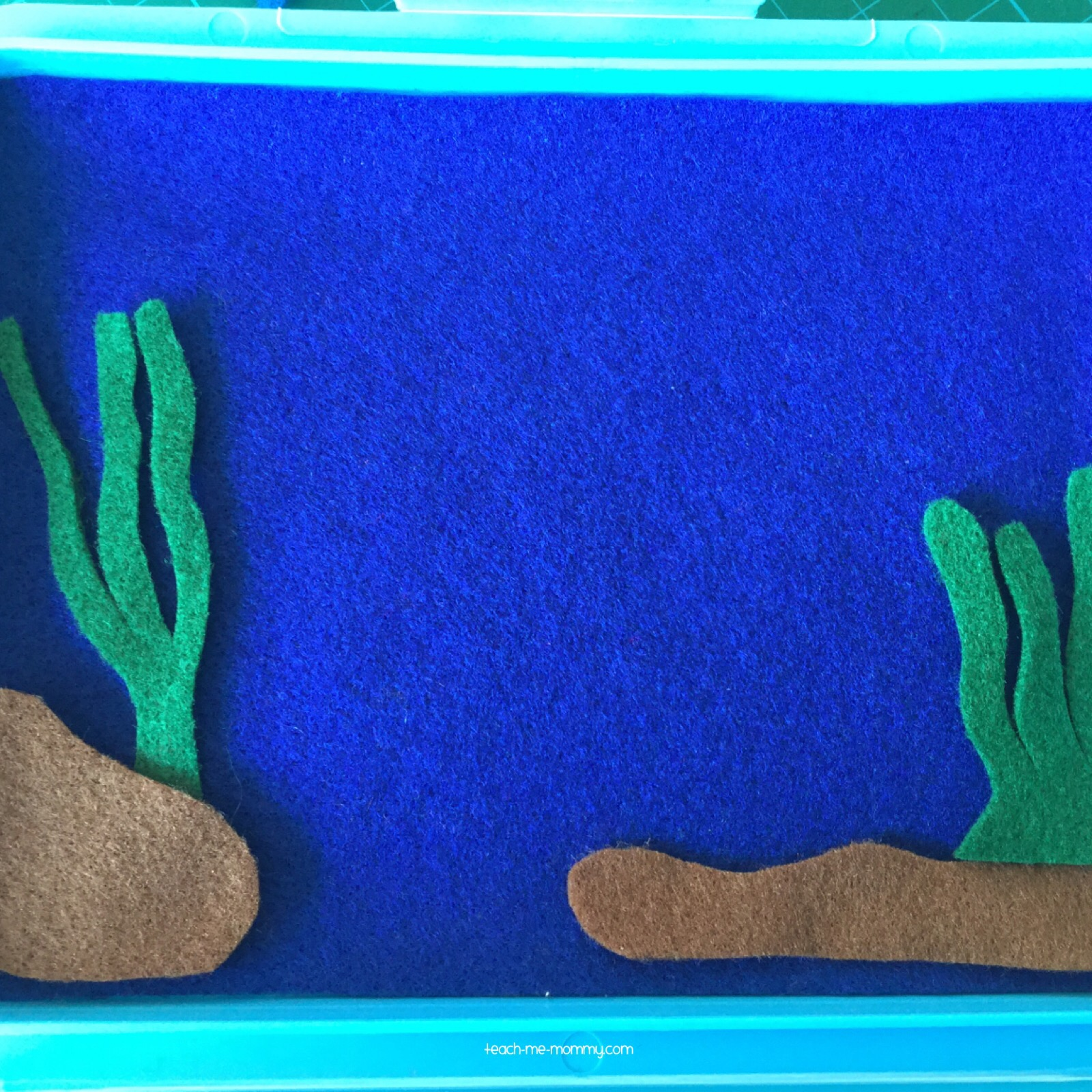 sand,rocks,plants