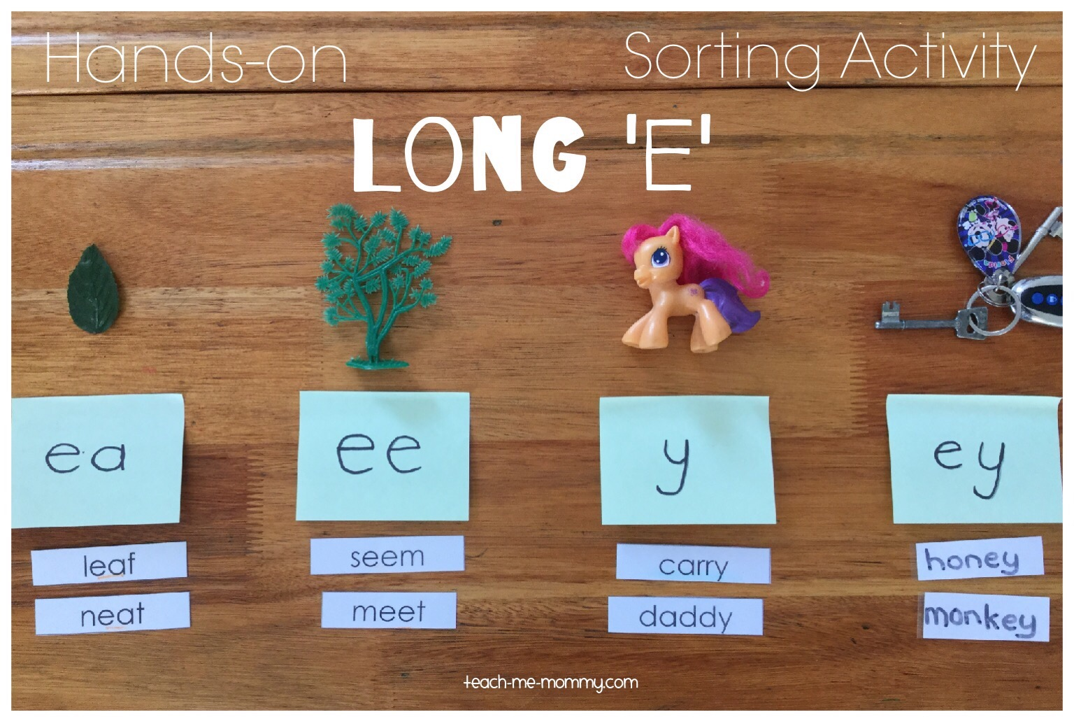 Long e sorting activity