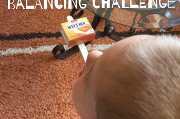 Ice Cream Stick Balancing Challenge