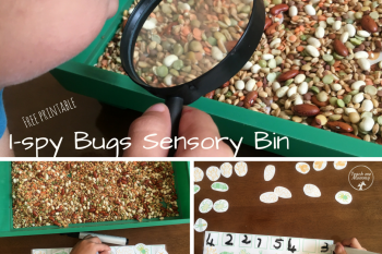 I-Spy Bugs Sensory Bin