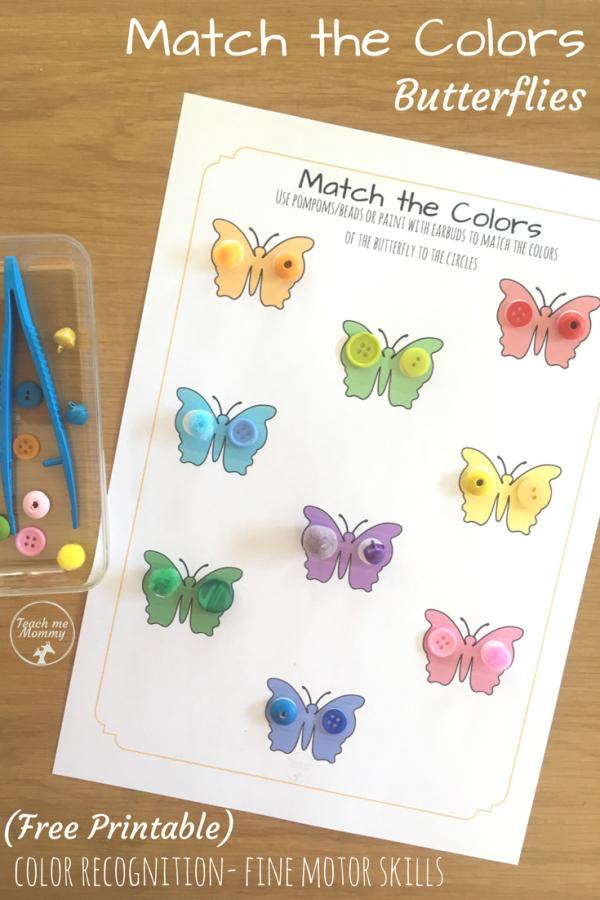 Match the Colors Butterflies