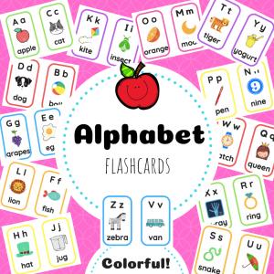 Buy Flashcards
