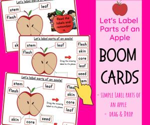 Parts of Apple Boom