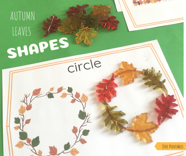 autumn leaf shapes