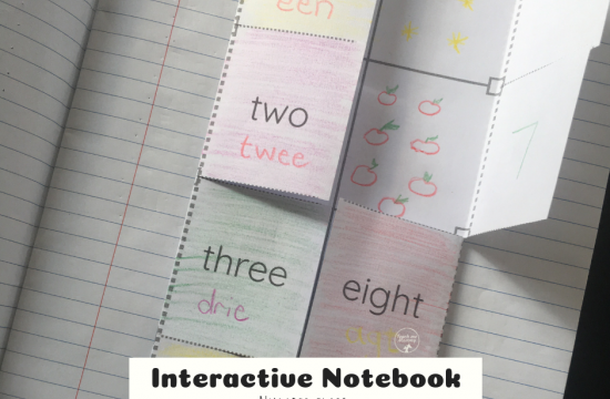 Interactive Notebook Numbers
