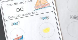 Vowel Combinations No-Prep Worksheets