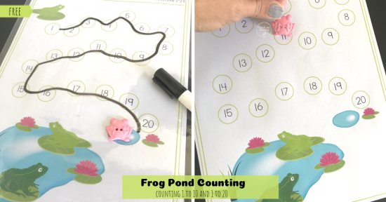 Frog Pond Counting fb