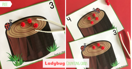 Ladybug Counting Cards