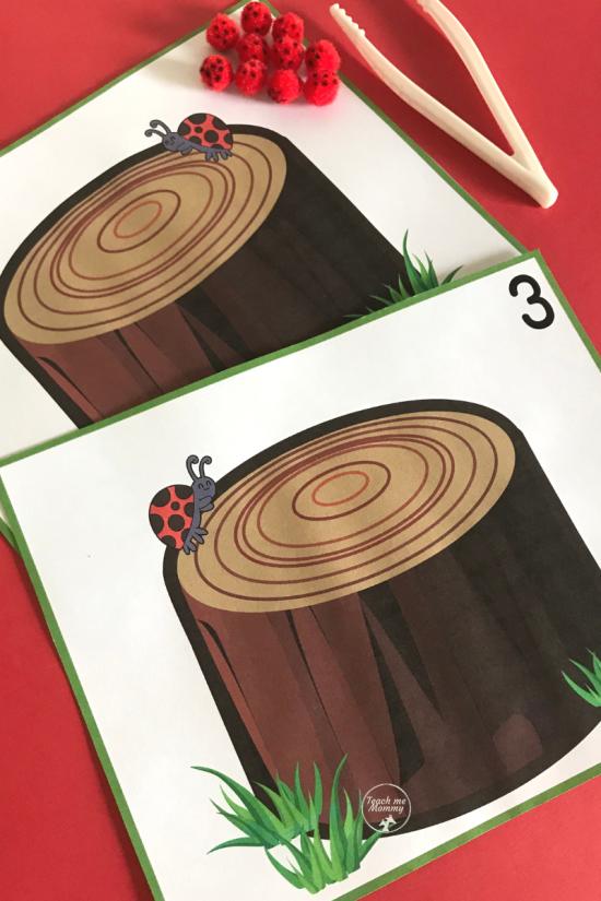 Ladybug cards1