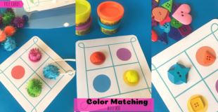 Color Matching Busy Box
