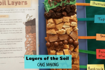 Layers of the Soil Cake