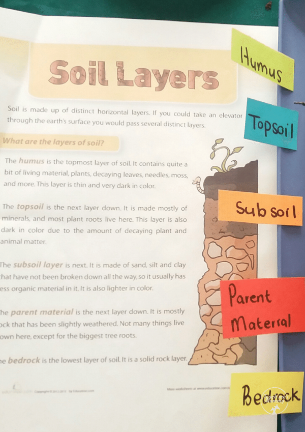 Layers of soil1