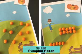 Teen Sums Pumpkin Patch