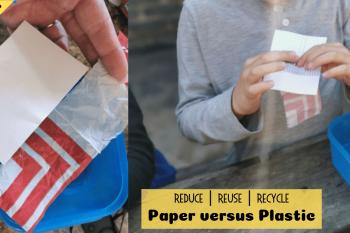 Paper versus Plastic Experiment