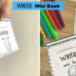 Winter mini book fb