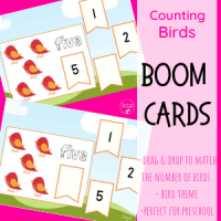 Counting Birds Freebie