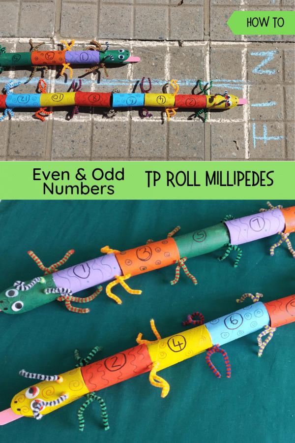 Even & Odd Millipedes pin