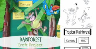Rainforest Craft Project
