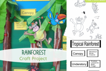 Rainforest Craft Project