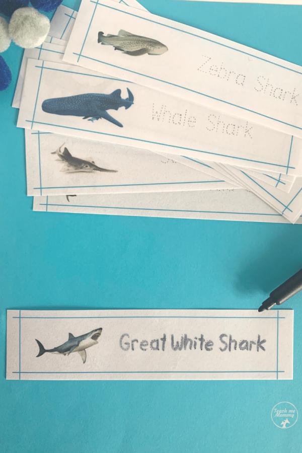 Shark names writing