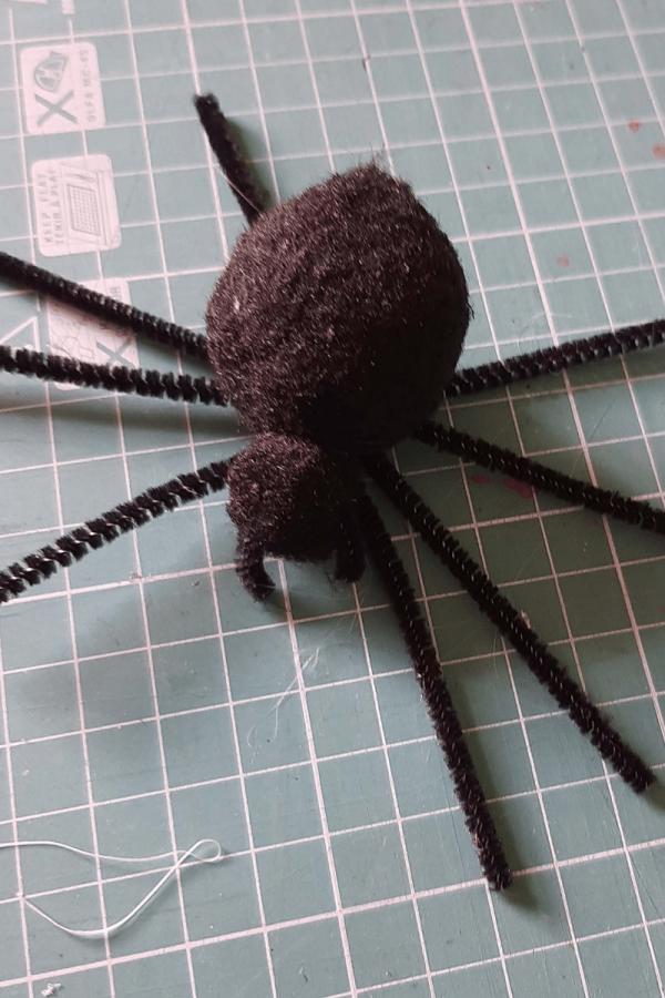 Spider body