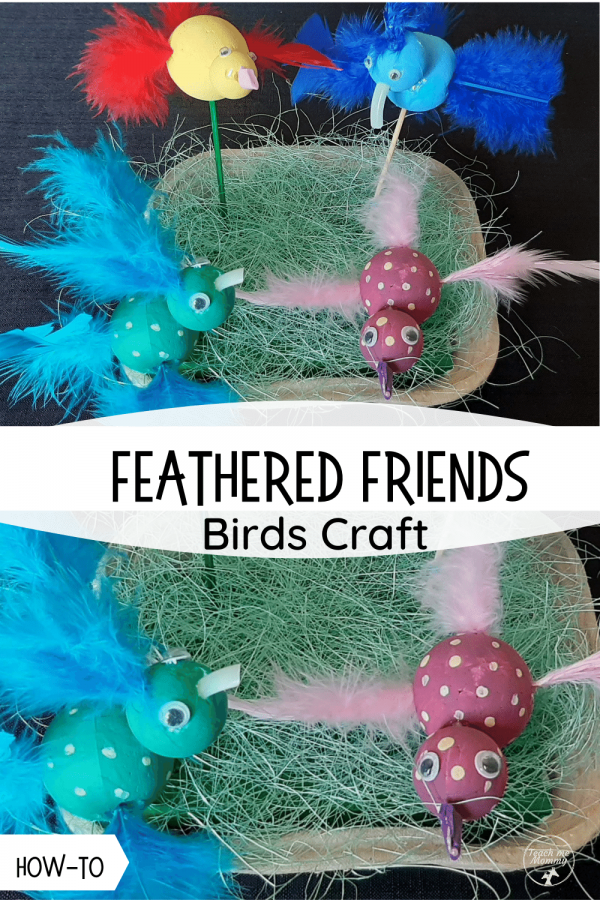Birds craft