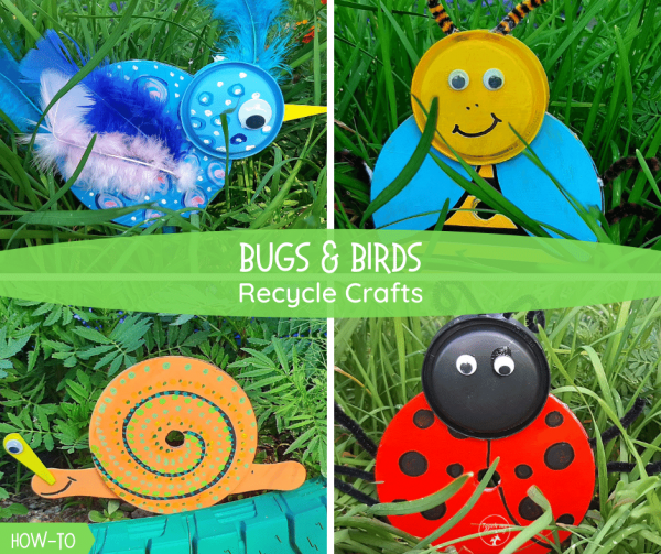 Bugs and birds recycle crafts fb