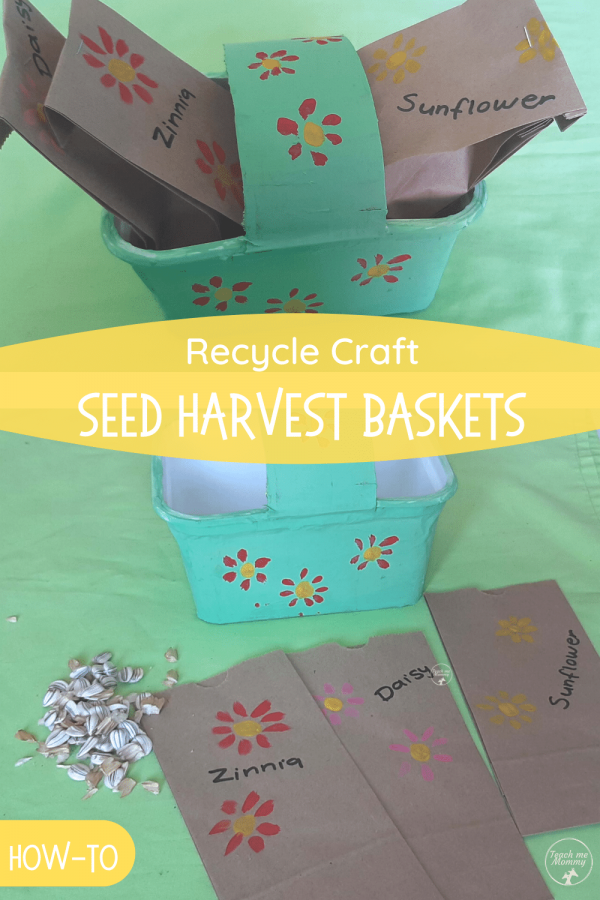 Seed harvest baskets PIN