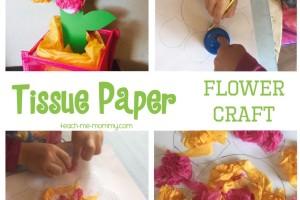 Bright Tissue Paper Flower Craft